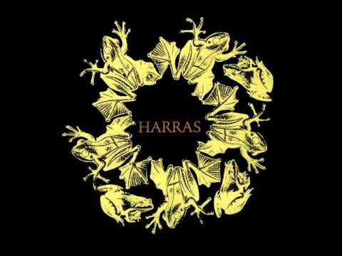 Derek Bailey  John Zorn  William Parker  Morning Harras 1995