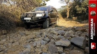Ironman Fortuner & Gypsy: Crawling in Jungles