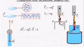 поверхностное натяжение жидкостей  Урок 48