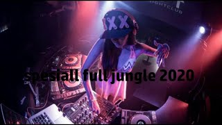 Download Lagu Jungle Dutch 2020 Mixing (MR EWIK X ENDO AP X RISKYRACLAW) mp3