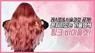 가을염색 추천 핑크 바이올렛 염색하는 방법(염색약 레시…
