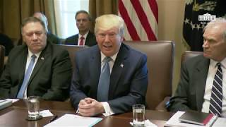 President Trump Participates in a Cabinet Meeting