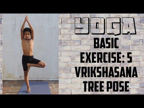 yoga basic exercise yoga basic exercise 5 vrikshasana