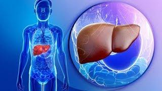 إلتهاب الكبد الفيروسي | لم الشمل