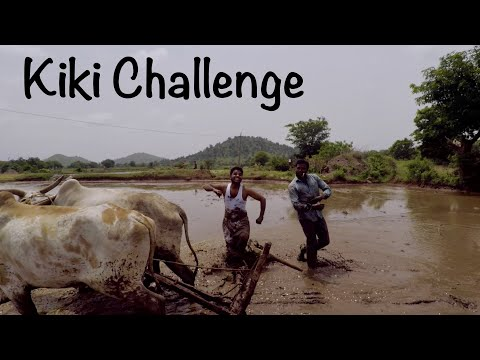 Whatever Happened To ... The Farmers Who Danced In The Mud For The 'Kiki Challenge'?
