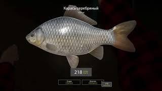 Русская рыбалка 4 - озеро Комариное - Собираю денег на билет до реки Вьюнок