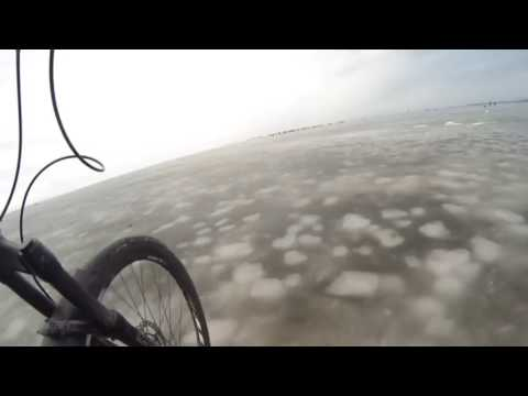 Nishiki bike 😻