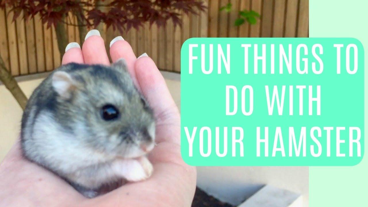 6 fun things to