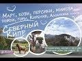 Северный Кипр - Март, козы, персики,  дожди, мимоза, горы, Кирения - 31 марта 2017