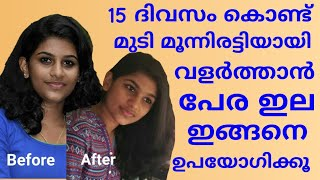 Just in 15 days😮Guava leaf for thick and fast hair growth//kechuz beauty vlogs..