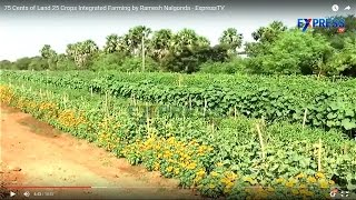 75 Cents of Land 25 Crops Integrated Farming by Ramesh Nalgonda - ExpressTV