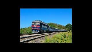 11 Поезд Брест-Адлер Житковичи