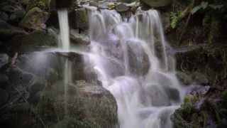 Cherokee: Do hi yi (Where peace resides) - [Native American Flute & Cherokee Photos]