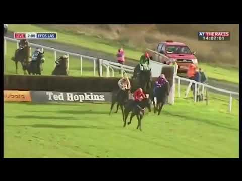 Albert Bartlett Winner Kilbricken Storm Fights Back Gallantly To Win On Chase Debut At Ffos Las