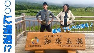 知床五湖&フレペの滝でまさかの○○に遭遇!?【日本一周#26北海道知床】