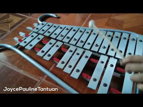 Baby Shark -  Lyre Cover