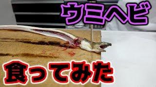 釣ったウミヘビを食べてみたら予想以上の結果に・・・