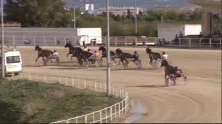 Vidéo de la course PMU PREMI GRISTAN MAR