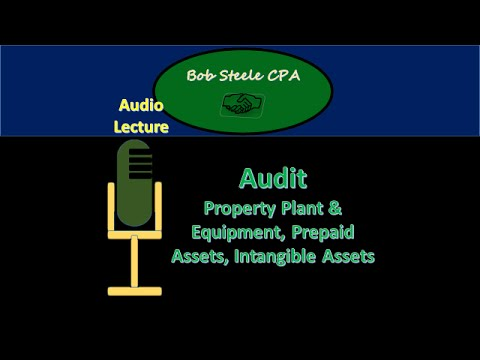 56405-Audit-Property Plant & Equipment, Prepaid Assets, Intangible Assets