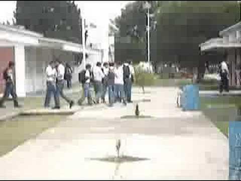 high  school  mexico