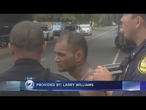 2 arrested in Kailua after burglary attempt, manhunt