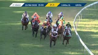 Vidéo de la course PMU PRIX EGOISMO