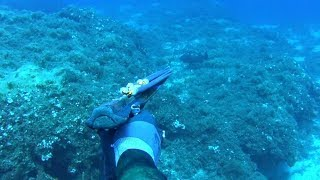 spearfishing adventures 17: spearfishing vacations part ½ - Tzia island