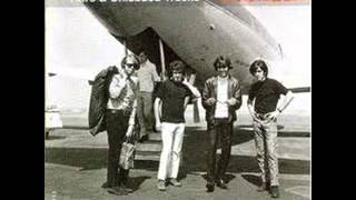 Did You Ever Have That Feeling - The Standells