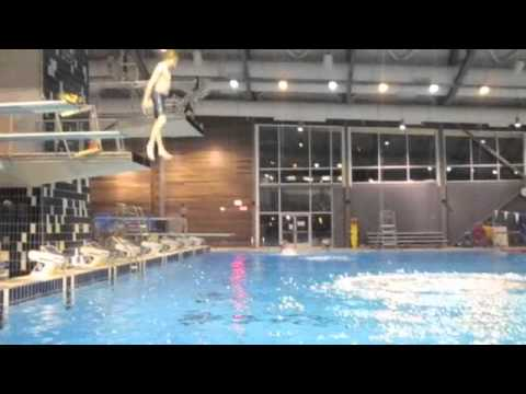 diving off the boards thumbnail