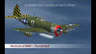 Warbirds of World War II