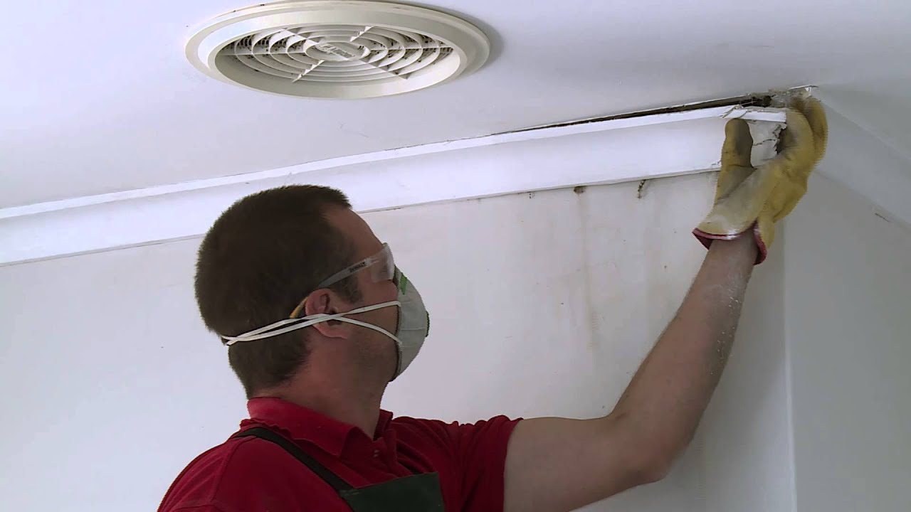How To Remove Cornice Diy At Bunnings Youtube