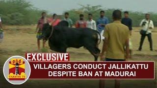 FIRST VISUAL | Villagers conduct Jallikattu despite ban at Madurai, Karisalkulam
