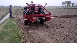 90 Adeel Ahmad agriculture farm @depalpur, pakistan