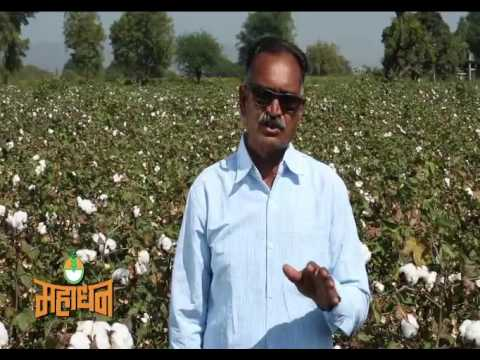 How Mahadhan Fertilisers help and support Drip Irrigation System