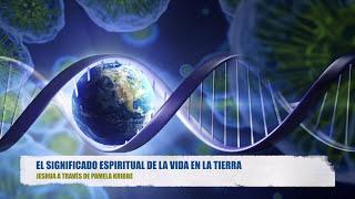 EL SIGNIFICADO ESPIRITUAL DE LA VIDA EN LA TIERRA - Jeshua a través de Pamela Kribbe thumbnail