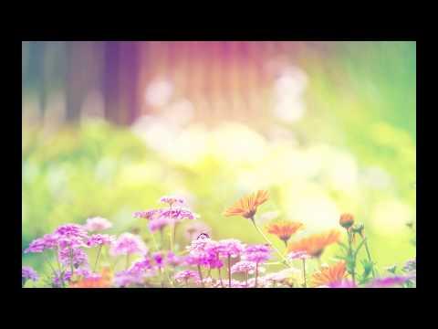 Karen O & Ezra Koenig - The Moon Song lyrics