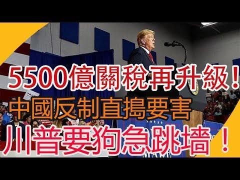 5500億關稅再升級!中國反制直搗要害,川普要狗急跳墻!  時政焦點  