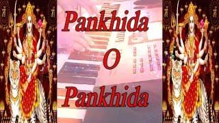 Download Hindi Video Songs - Pankhida O Pankhida - Instrumental