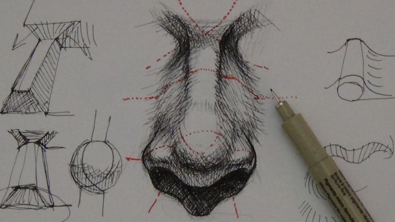 Pen ink drawing tutorials how to draw a realistic nose youtube ccuart Image collections