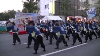 福井大学よっしゃこい2013年度演舞「夢光咲」 むこうへ 安濃津よさ...