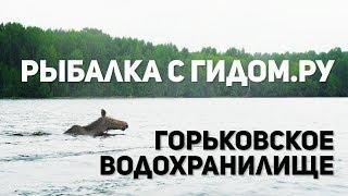 Рыбалка с гидом на Горьковском водохранилище Река Унжа