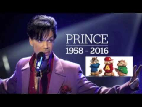 Prince 1999 Chipmunk Version