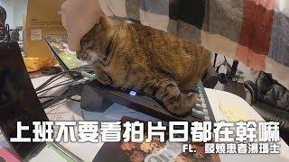 【LiFe】瘋狂拍片日 ft.Joeman thumbnail