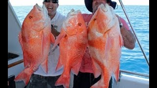 Centurion fishing charters with Reefari Mothershipping!! Slideshow!! Thumbnail