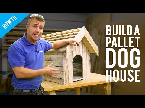 How to build a dog house with recycled pallets
