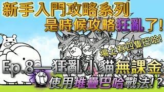 貓咪大戰爭 新手向攻略Ep.8—狂亂小貓—★☆無課金攻略☆★