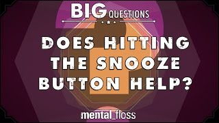 Does Hitting The Snooze Button Help?  - Big Questions - (Ep. 34)
