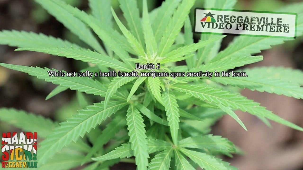 Rseenal feat  Iyah Gift & Makonnen - What Kinda Herbs [Official Video 2015]