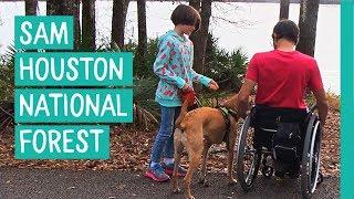 FIRST TEXAS VISIT - SAM HOUSTON NATIONAL FOREST - FULLTIME RV TRAVEL