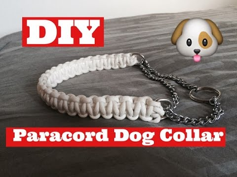 Dog Collar Custom Dog Collar Collar Dog Collars Martingale Collar Paracord Collar Paracord Martingale Collar Dog Martingale